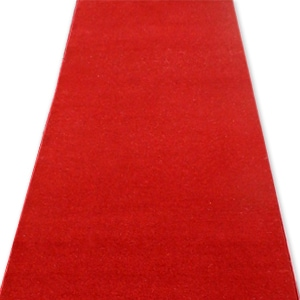 Hollywood Oscars ceremony red carpet for hire