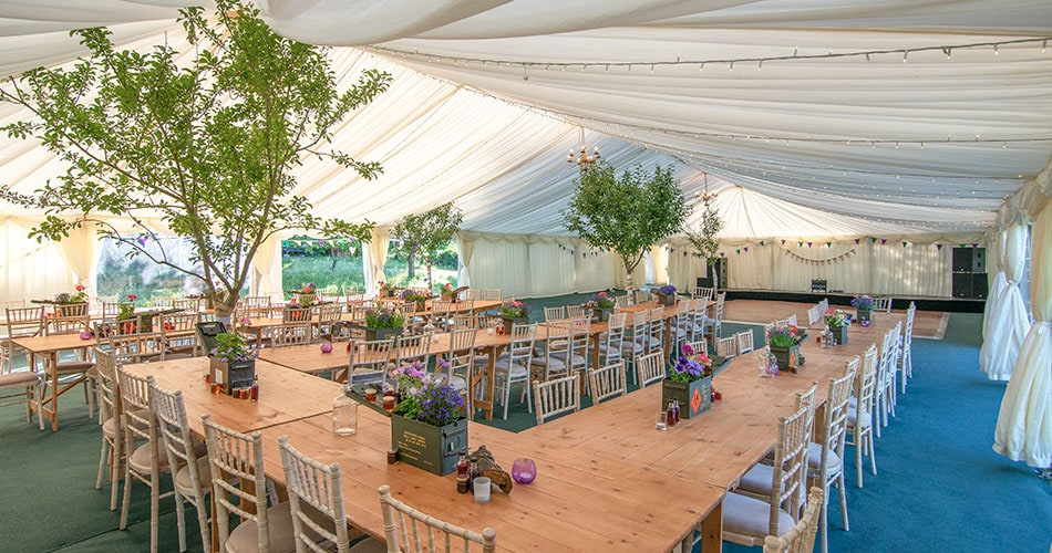 Interior of a wedding marque in Somerset with live apple trees inside